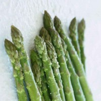 芦笋种子 芦笋 芦笋种苗 保健蔬菜种苗